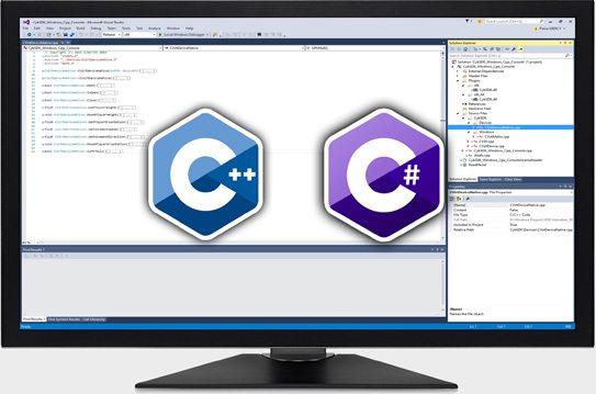 Visual Studio Working Screen